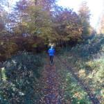 Der erste Trail